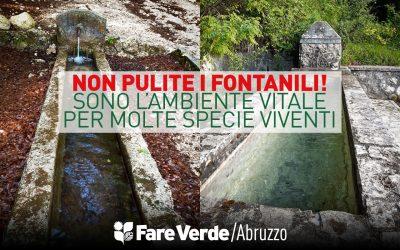 Giornata ambiente: non pulite i fontanili