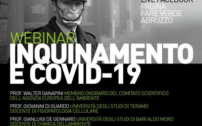 Webinar Inquinamento e Covid-19